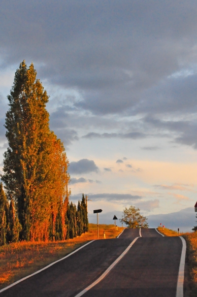Tuscan Roads