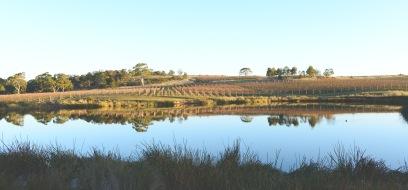 Milton Winery