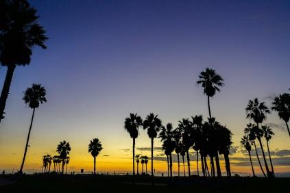Venice Beach on dusk