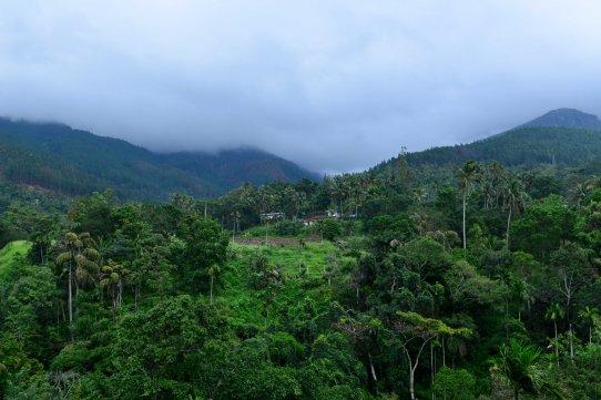 glenrock_retreat_srilanka-2